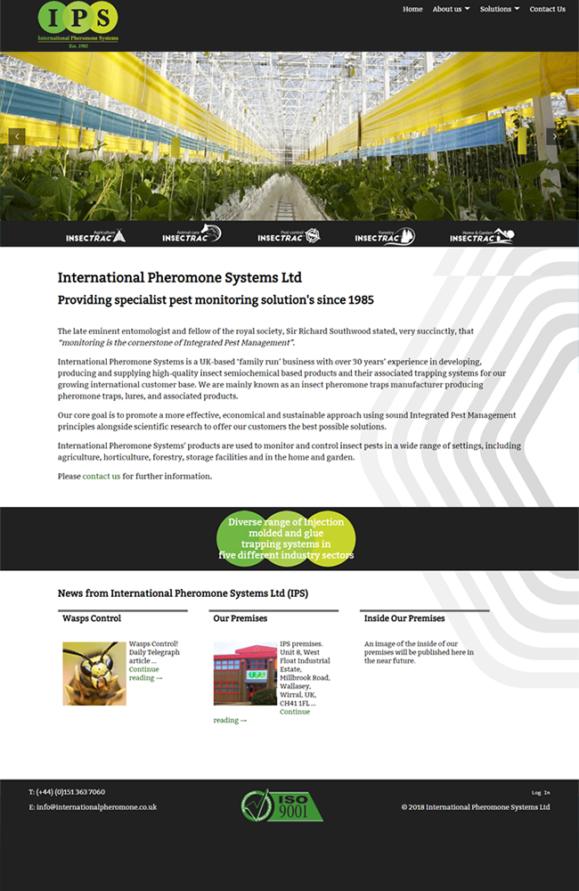 Website Portfolio - IPS - 650 x 1000